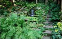 Как да изградим страхотна градина по наклонен терен